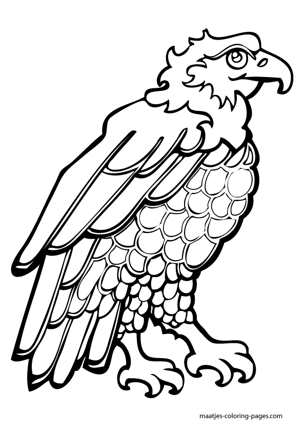 independence_day Coloring Pages